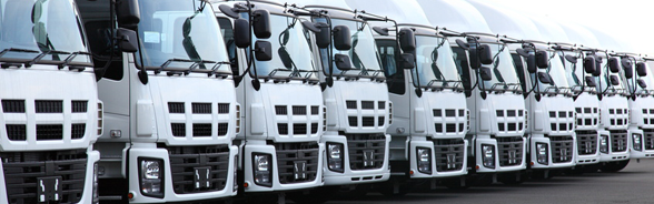 Line of white lorries leaving a factory